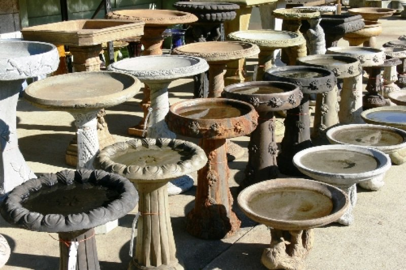 Types 18 Market Imports Raleigh Nc